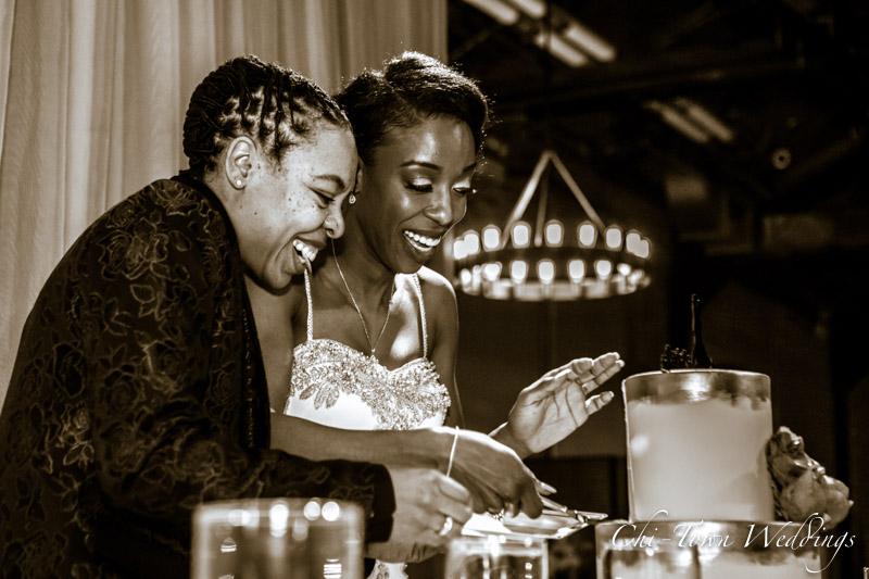 www.Chi-Town-Weddings.com Brides cutting cake